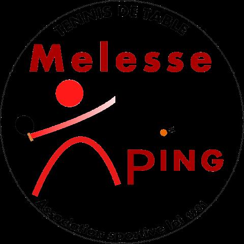 g42023_logo_v21_Melesse_P_transparence_Large_Small